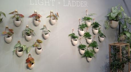 light-and-ladder-2