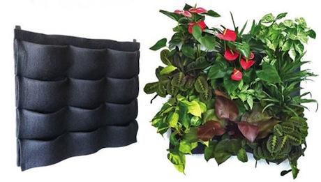 plants-on-walls