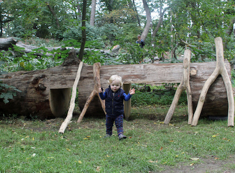 natural-playground-log